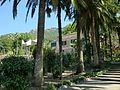 Jardines de Alfàbia (13).jpg
