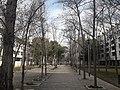 Jardins Creu Casas.jpg