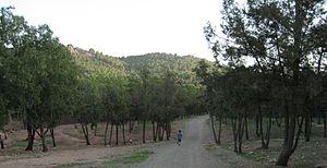 Jbel Hamra - Jbel Hamra