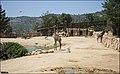 Jerusalem-Biblical-Zoo-IZE-459.jpg