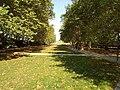Jesienna odsłona Górki Pafawag.jpg