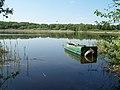 Jezioro Swarzędzkie.jpg