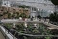 Jindai Botanical Garden-14.jpg