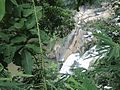 Jonha falls 03.jpg