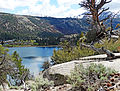 June Lake, High Sierra, CA 5-15 (21199751950).jpg