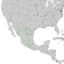 Juniperus flaccida range map 2.png