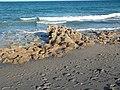 Jupiter FL Coral Cove Park beach01.jpg