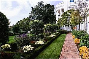 Jacqueline Kennedy Garden - Fall in the Jacqueline Kennedy Garden. The brick paved walk along the east colonnade is bordered with bronze colored spoon chrysanthemumStarlet.