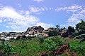 Kigulu Hills 3 (2).jpg