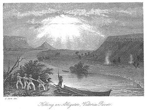 Victoria River (Northern Territory) - Killing an Alligator, Victoria River from Volume 2 of John Lort Stokes' 1846 book Discoveries in Australia.