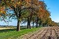 Kremsmünster Guntendorf-3845.jpg