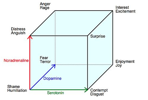 Why is it important to examine emotions from a sociological perspective?