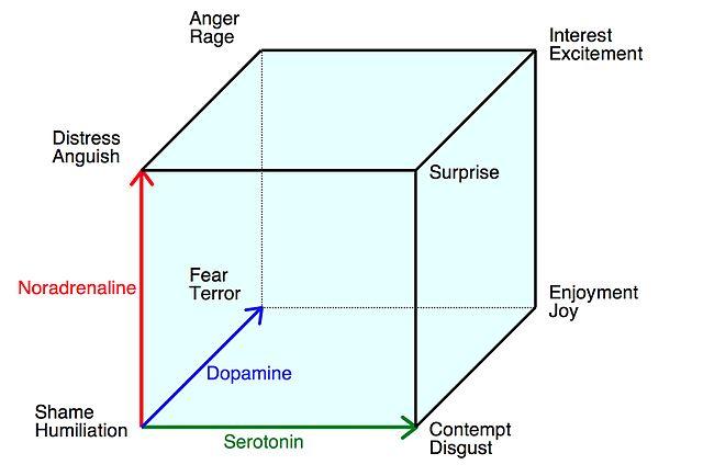 From Wikipedia - http://en.wikipedia.org/wiki/Emotion