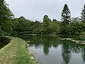 Lac des sources (Druyes-les-Belles-Fontaines) juin 2019 (4).jpg