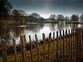 Lake in Fairlands Valley Park - panoramio.jpg