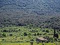 Landscape near Col du Triby (19166810570).jpg