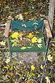 Landschaftsschutzgebiet Steinberg - Alter Stuhl beim alten Haus (3).JPG