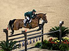 A brown horse with a rider in mid-air over a jump, surrounded by potted plants, in a dirt ring.