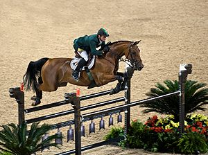 Equestrian at the 2008 Summer Olympics - Denis Lynch and Latinus in show jumping