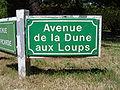 Le Touquet-Paris-Plage (Avenue de la Dune aux loups).JPG