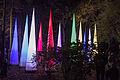 Light Move Festival36(js).jpg