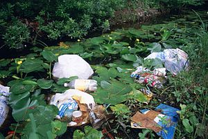 Garbage - Litter dumped in a wetland area in the United States, among water lilies and marsh plants.