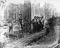 Loggers in the woods, camp 1, Simpson Logging Company, Mason County, ca 1924 (KINSEY 1675).jpg