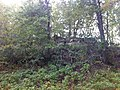 Lone Rock - panoramio.jpg