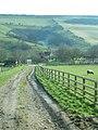 Looking across Millington Bottom over College Farm - geograph.org.uk - 334099.jpg