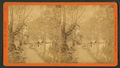 Looking down race from city dam, Brandywine, from Robert N. Dennis collection of stereoscopic views.png