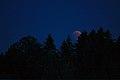 Lunar Eclipse 2018 SG 006 (28804399907).jpg