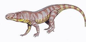 Rauisuchidae - Image: Luperosuchus 1DB