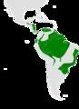 Lurocalis semitorquatus range map.png