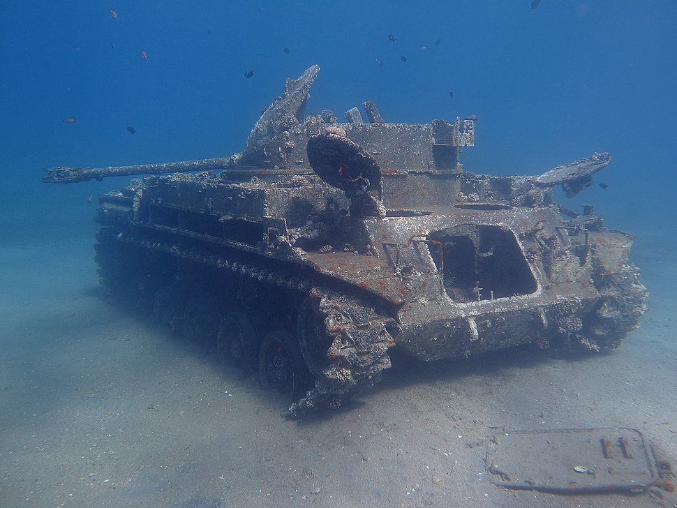 """M42 self propelled AA gun """"Duster"""" in the Red Sea of Jordan"""