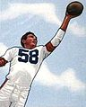 Mac Speedie, American football end, on a 1950 football card.jpg
