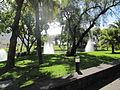 Madeira em Abril de 2011 IMG 1779 (5663790648).jpg