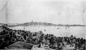 Madison, Wisconsin - View of Madison from the Water Cure, South Side of Lake Monona, 1855