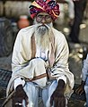 Man with a long beard and a colourful turban, Rajasthan (6358886051).jpg
