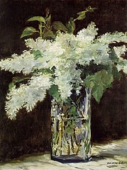 White Lilacs in a Glass Vase