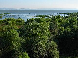 Lake Kuş lake in Turkey