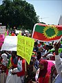 March for oromia 2007 025.jpg