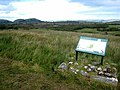Marlbank National Nature Reserve - geograph.org.uk - 984280.jpg