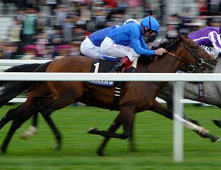 Mastery (horse) British-bred Thoroughbred racehorse
