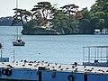 Matsushima Bay 松島灣 - panoramio (2).jpg