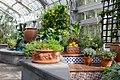 Mediterranean Room at the US Botanic Garden (25736736670).jpg