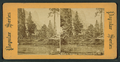 Merced R., Hutching's Hotel and Sentinel Rock, Cal, from Robert N. Dennis collection of stereoscopic views.png
