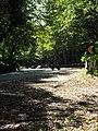 Mirante Morro Reuter - panoramio (1).jpg