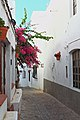 Mojacar typical street (c).jpg
