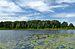 Mooste järv.JPG