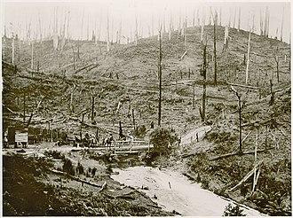 Strzelecki Ranges - Image: Morwell River 1913